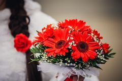 Wedding gerbers bouquet, background couple in Royalty Free Stock Photography