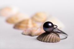 Wedding gift. A ring with black pearl on the sea shells Royalty Free Stock Photo