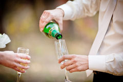 Wedding glasses of champagne in groom's hands. Close up of detail with champagne glasses Royalty Free Stock Images