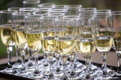 Wedding glasses with champagne, ready to be served Royalty Free Stock Photography