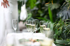 Wedding glasses filled with champagne Stock Images