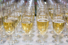 Wedding glasses filled with champagne, ready to be served Royalty Free Stock Photography
