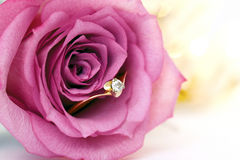 Wedding gold ring with diamond and rose flowers Stock Photo