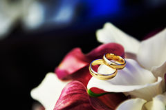 Wedding gold rings on bouquet Royalty Free Stock Photography