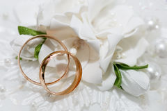 Wedding gold rings bride and groom Stock Image