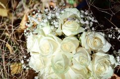 Wedding gold rings lie on the bouquet of the bride. royalty free stock photos