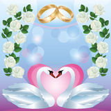 Wedding greeting or invitation card with swans Royalty Free Stock Photo