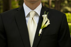 Wedding groom with corsage Royalty Free Stock Photography