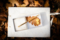 Wedding guest book. Wedding rings and guest book Stock Photography