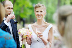 Wedding guests toasting bride and groom. Wedding guests toasting happy bride and groom Stock Photos