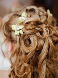 Wedding hairdo. Beautiful wedding hairstyle with flowers Stock Image