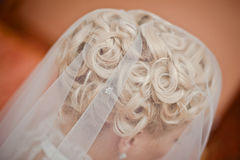 Wedding hairdo. Closeup of a beautiful wedding hairdo under the veil Royalty Free Stock Image