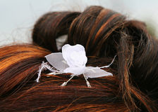 Wedding hairstyle. With white rose Stock Photography