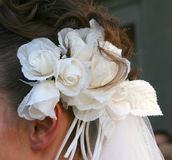 Wedding hairstyle. With ecru roses and vail Royalty Free Stock Photo