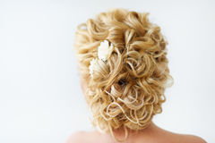 Wedding hairstyle. Beautiful wedding hairstyle on blonde hair with curls rare view Stock Images