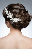 Wedding Hairstyle. Portrait of attractive young woman with beautiful hairstyle and stylish hair accessory, rear view Royalty Free Stock Images