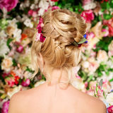 Wedding hairstyle a young girl. Bride. Woman with Flowers in her Royalty Free Stock Images