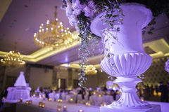 Wedding hall. In violet theme Stock Image