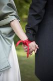 Wedding Handfasting Ceremony Royalty Free Stock Image