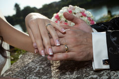 Wedding hands Stock Images