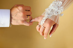Wedding Hands. Couple's hands with wedding rings Royalty Free Stock Photography