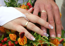 Wedding hands Stock Image