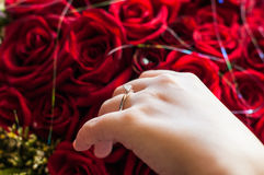 Wedding Hands. Ands with rings, marry successful stock images