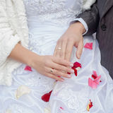 Wedding hands Royalty Free Stock Photography