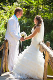 Wedding - happy couple holding by hands Royalty Free Stock Photography