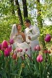 Wedding.Happy couple  in park Royalty Free Stock Photo