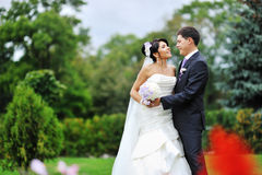 Wedding. Happy young bride and groom portrait Stock Photos
