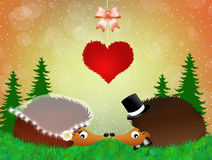 Wedding hedgehogs Royalty Free Stock Photography