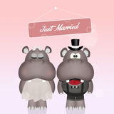 Wedding of hippos Royalty Free Stock Photo