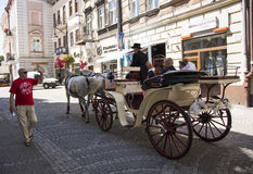 Wedding horses carriage Royalty Free Stock Photography
