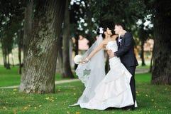Wedding. Hugging bride and groom Stock Image