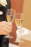 Wedding image of a toast Royalty Free Stock Photos