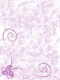 Wedding invitation. A wedding invitation on pink with some roses, creating a border frame for invitation Stock Photos