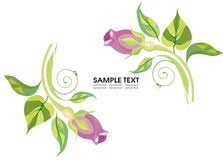 Wedding invitation background. Vector drawing of the greeting card with roses Stock Photos