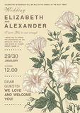 Wedding invitation. Beautiful flowers Petunia card. Frame, label. Vector victorian Illustration. Royalty Free Stock Image