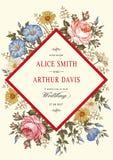 Wedding thanks invitation. Beautiful realistic flowers Chamomile Rose card. Frame, label. Vector victorian Illustration. Petunia Royalty Free Stock Photos