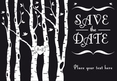 Wedding invitation with birch trees, vector. Wedding invitation with birch trees, birds and heart, vector background Stock Photos