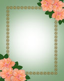 Wedding invitation border Hibiscus  Stock Image