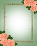 Wedding invitation border Hibiscus stock image