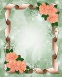 Wedding Invitation border hibiscus royalty free stock image