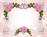 Wedding invitation border Orchids and ivy. Image and illustration composition, pink orchids, ivy, hearts, ribbon frame for wedding, party invitation border with Royalty Free Stock Photos