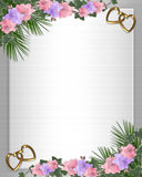 Wedding invitation Border orchids ivy. Illustration and image composition for background, pink orchids, ivy floral border, wedding invitation or template with Royalty Free Stock Photography