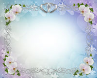 Wedding invitation Border orchids ivy Stock Photography
