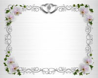 Wedding invitation Border orchids ivy Royalty Free Stock Photo