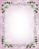 Wedding invitation Border orchids ivy Royalty Free Stock Image