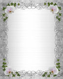 Wedding invitation Border orchids ivy Stock Image
